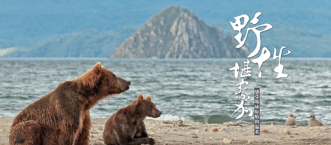 野性堪察加——去看世界刚出生时候的样子!