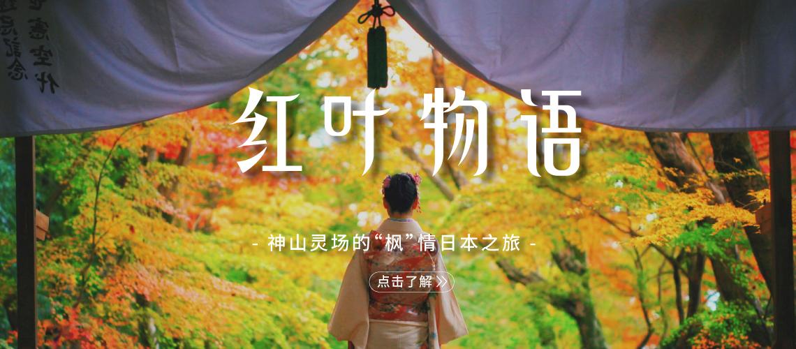 霓虹红叶季,神山灵场的元气之旅!